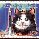 Felicette, första katten i rymden.